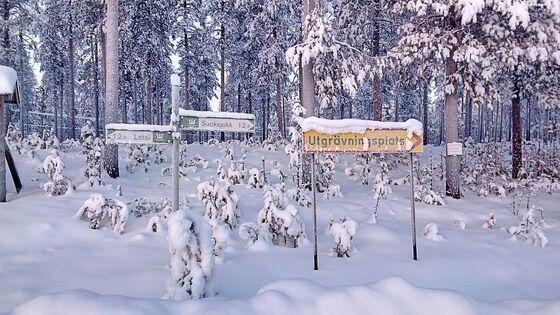 Op wintersport naar Lapland